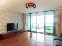 红树西岸 湾区豪宅 滨海湾居 精装修南北通透 居家舒适